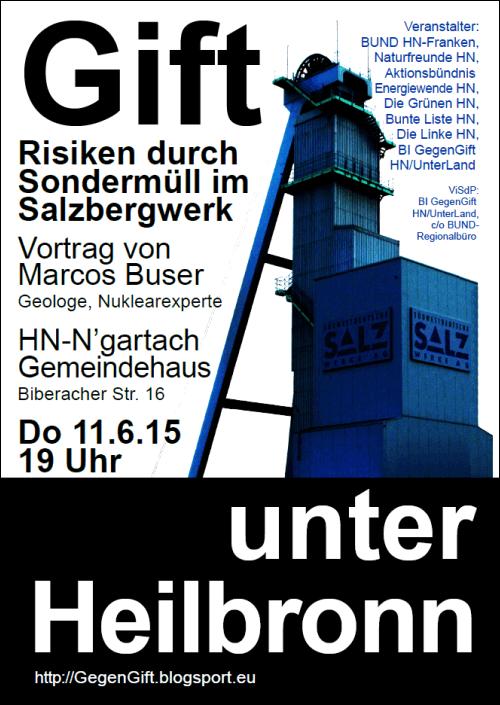 2015-06-11-Buser-Vortrag